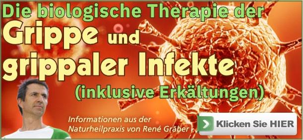 Buch: Die biologische Therapie der Grippe von René Gräber