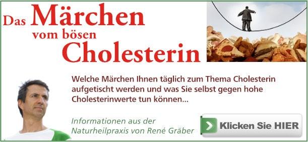Buch: Cholesterin von René Gräber